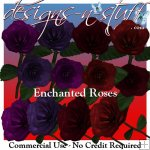 Enchanted Roses