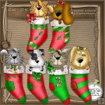 Stocking Pets CU