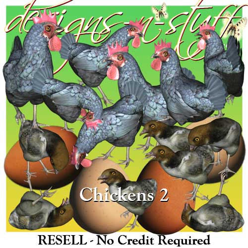 Chickens 2 - Resell