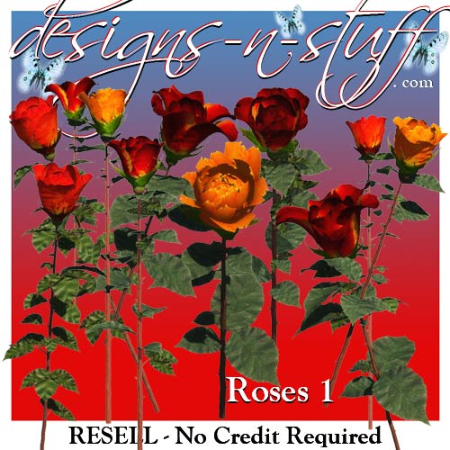 Roses 1 - Resell